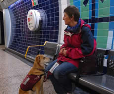 Woman seated with a hearing dog in a tube station